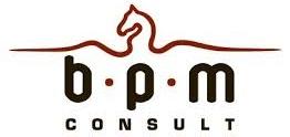 BPM Consult